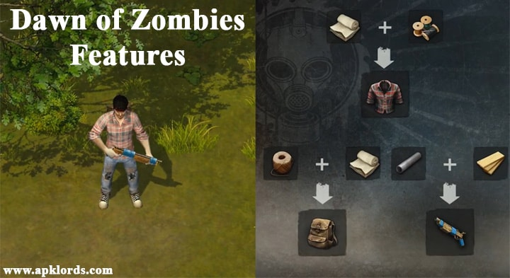 Dawn of Zombies Features